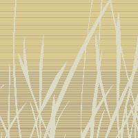 Grassfields - Autumn